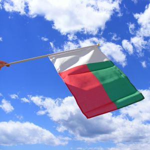 Madagascar Hand Waving Flag