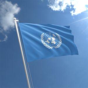 United Nations Flag 3Ft X 2Ft