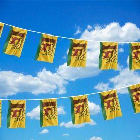 Berkshire Flag Bunting