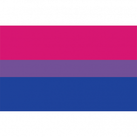 Bi Pride Flag 8ft x 5ft