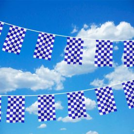 Blue & White Chequered Bunting
