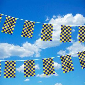 Blue & Yellow Chequered Bunting