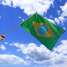 Brazilian Hand Waving Flag