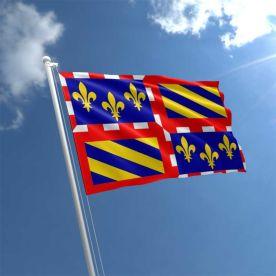 Burgundy flag