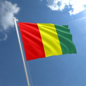 Carlow Flag