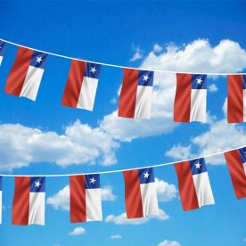 Chile Bunting