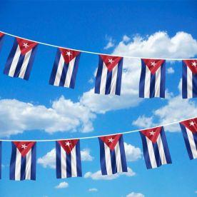 Cuba Bunting