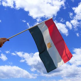 Egypt Hand Waving Flag