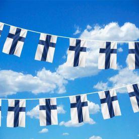 Finland Bunting