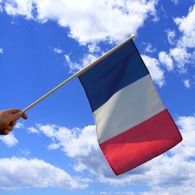 France Hand Waving Flag
