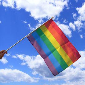 LGBT hand flag