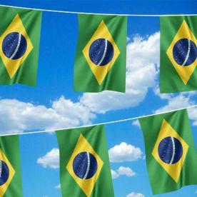Giant Brazil Bunting