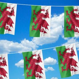 Welsh Dragon Bunting