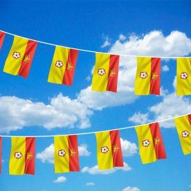 Hampshire Flag Bunting