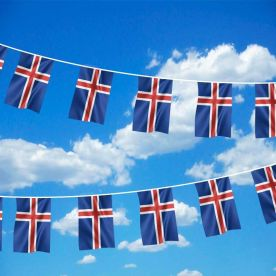 Iceland Bunting