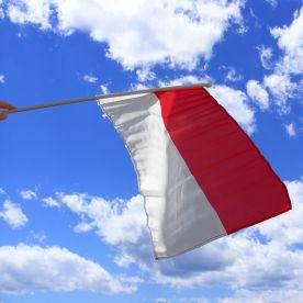 Indonesia Hand Waving Flag