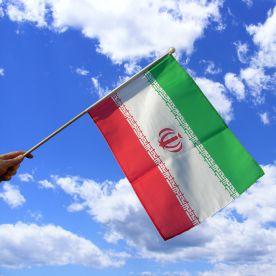 Iran Hand Waving Flag