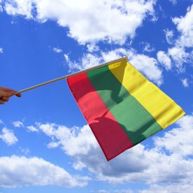 Lithuania Hand Waving Flag