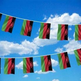 Malawi Bunting