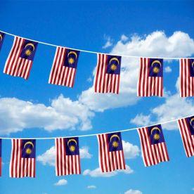 Malaysia Bunting