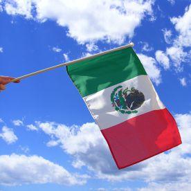 Mexico Hand Waving Flag