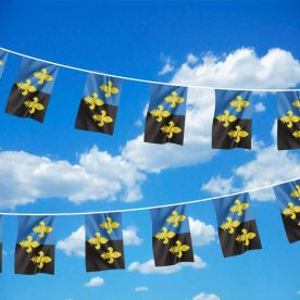 Monmouthshire Bunting
