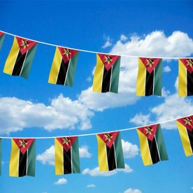Mozambique Bunting