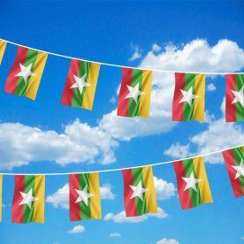 Myanmar Bunting