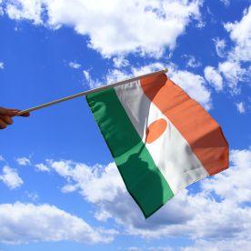 Niger Hand Waving Flag
