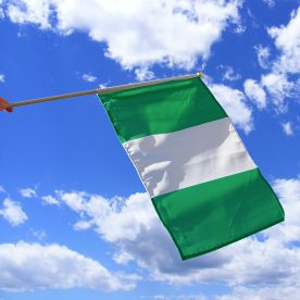 Nigeria Hand Waving Flag