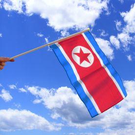 North Korea Hand Waving Flag