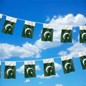 Pakistan Bunting