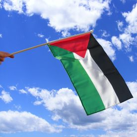 Palestine Hand Waving Flag