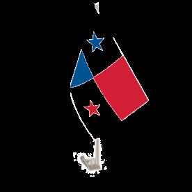 Panama Car Flag