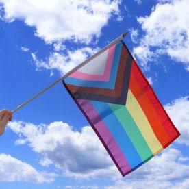 Progress Pride Hand Waving Flag