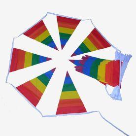 LGBT Triangular Bunting