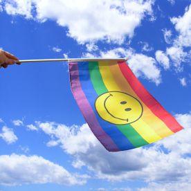 Rainbow Smile Hand Waving Flag