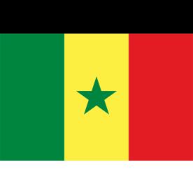 Big Senegal Flag