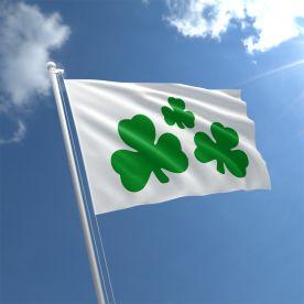 Shamrock Flag 3Ft X 2Ft