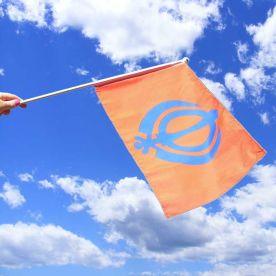 Sikh Hand Flag