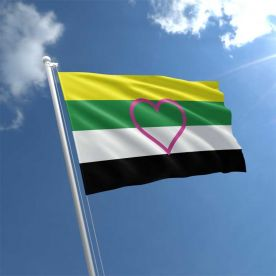 Skolisexual Flag