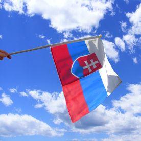 Slovakia Hand Waving Flag