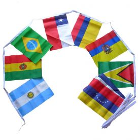 South American Bunting