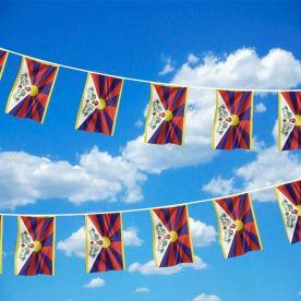 Tibet Bunting