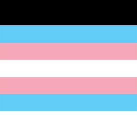 Transgender flag 8ft x 5ft
