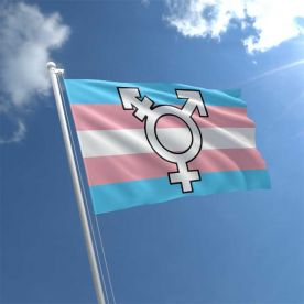 Transgender Symbol flag
