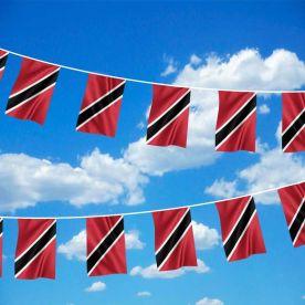 Trinidad & Tobago Bunting