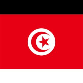 Big Tunisia Flag