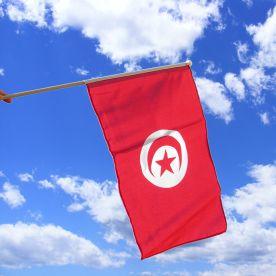 Tunisia Hand Waving Flag