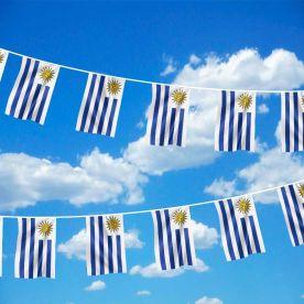 Uruguay Bunting